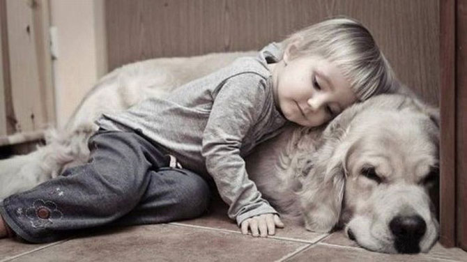 Funny Photos of Kids and Animals (2)
